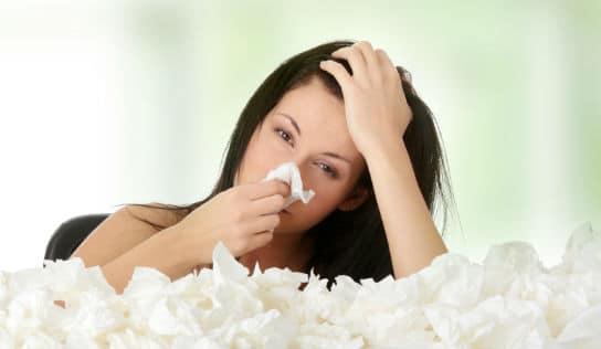 Allergia 544